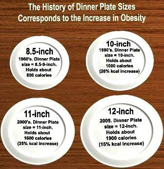 meal sizes